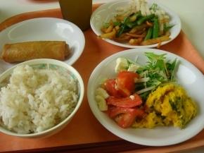 春巻き・ポテトインゲン炒め・水菜&かぼちゃ&トマトサラダ・麦ご飯