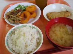 アジフライ・きんぴらごぼう・いかリング・キャベツのお味噌汁・サマランス米