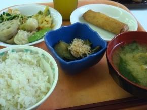 春巻き・茄子の煮浸し・わかめのい味噌汁・煮物